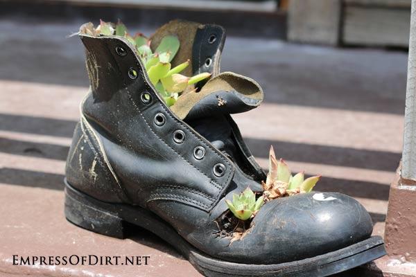 Plant a succulent boot: 9+ DIY Succulent Garden Ideas