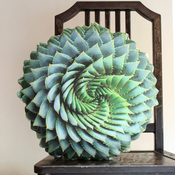 Delightful Succulent Pillow