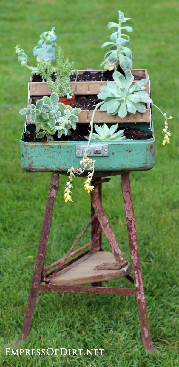 Plant a succulent fishing tackle box: 9+ DIY Succulent Garden Ideas