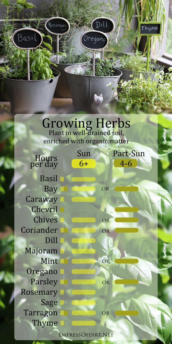 Growing herbs handy sun chart empress of dirt for How much sun does a garden need