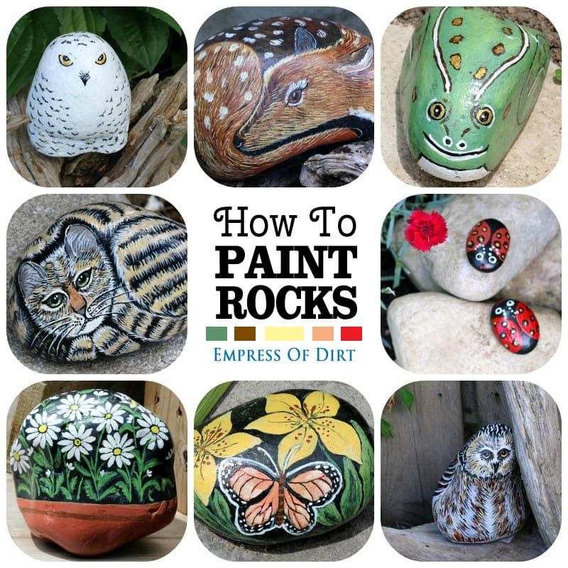 How to paint garden art rocks and stones | empressofdirt.net