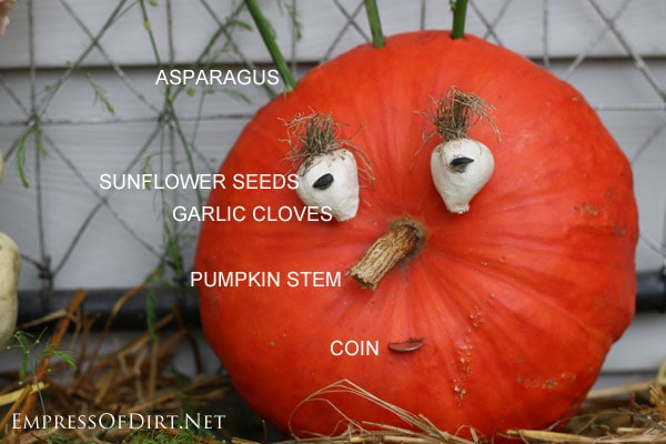 Use items you find around the house to create a wonderful Halloween or Fall pumpkin   empressofdirt.net