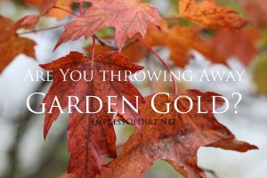 Use Your Leaves! Are You Throwing Away Garden Gold?