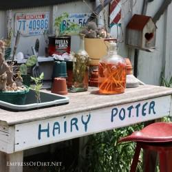 Hairy Potter Bench | empressofdirt.net