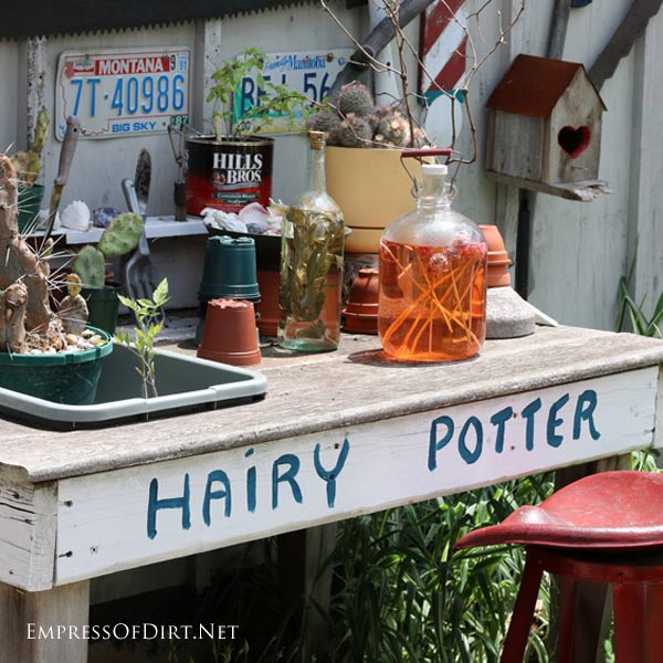 Hairy Potter Garden Bench where the mad scientist-wizard becomes an ecclectic gardener | empressofdirt.net