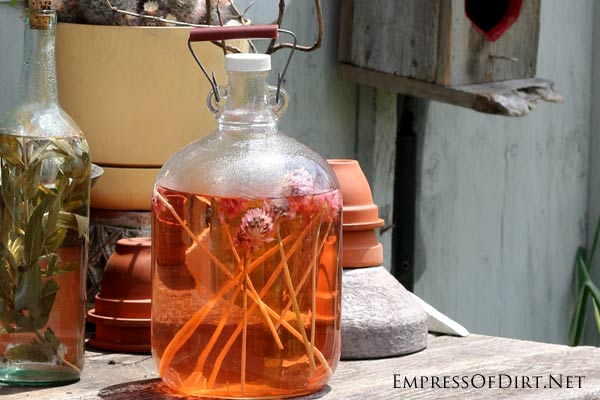 Fun potion on the Hairy Potter Garden Bench | empressofdirt.net