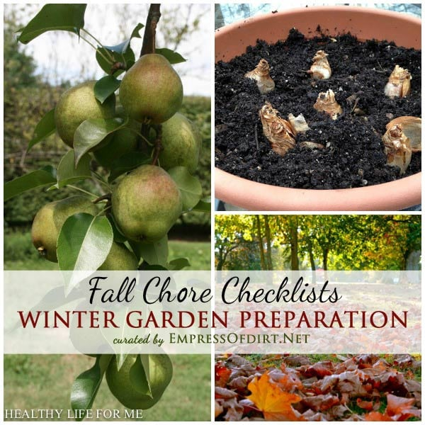 Winter Garden Preparation: Fall Chore Checklists | If you are overwhelmed by fall garden tasks or just don't know where to start, these checklists from experienced, organic gardeners will help. Once you know what's essential and what can wait, it's much easier to enjoy the autumn garden season.