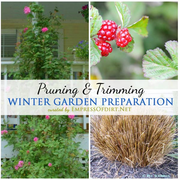 Tips from experienced gardeners on winter garden prep including pruning and trimming trees and shrubs | empressofdirt.net