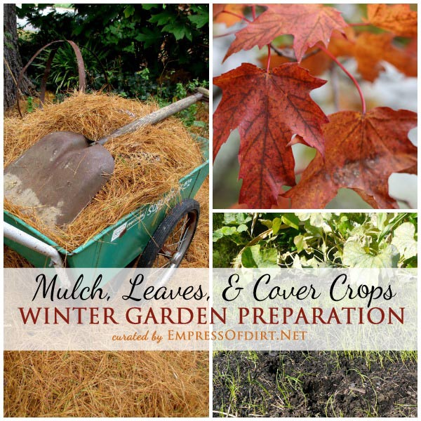If you only have time for a few fall garden tasks, put mulching at the top of the list. By protecting plants and soil with a layer of natural materials such as leaves or pine needles, you are providing both weather protections, insulation, and future nutrients for the soil. Come see more fall garden tips for a healhty spring garden!