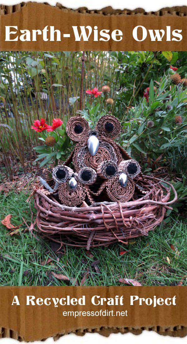 Earth-Wise Owls