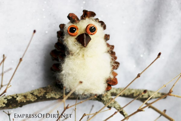 DIY Pinecone Owl sitting on a tree branch: fun, easy nature craft