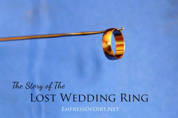 the story of the lost wedding ring