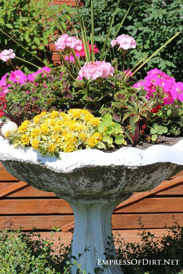 Bird Bath Planted With Colourful Flowers | 21 Gorgeous Flower Planter Ideas