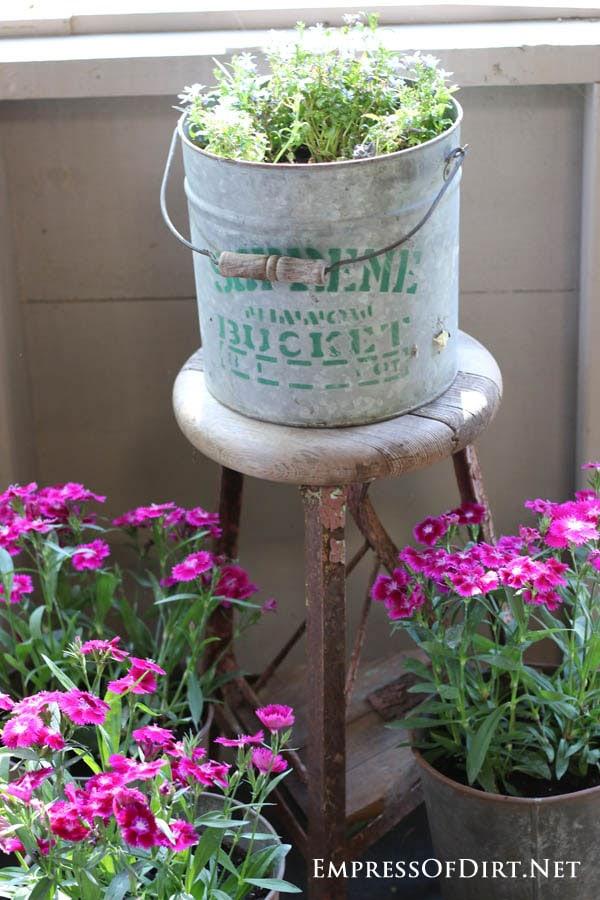 Galvanized bucket used as a planter | 21 Gorgeous Flower Planter Ideas