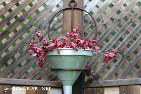 Repurposed funnel planter | 21 Gorgeous Flower Planter Ideas