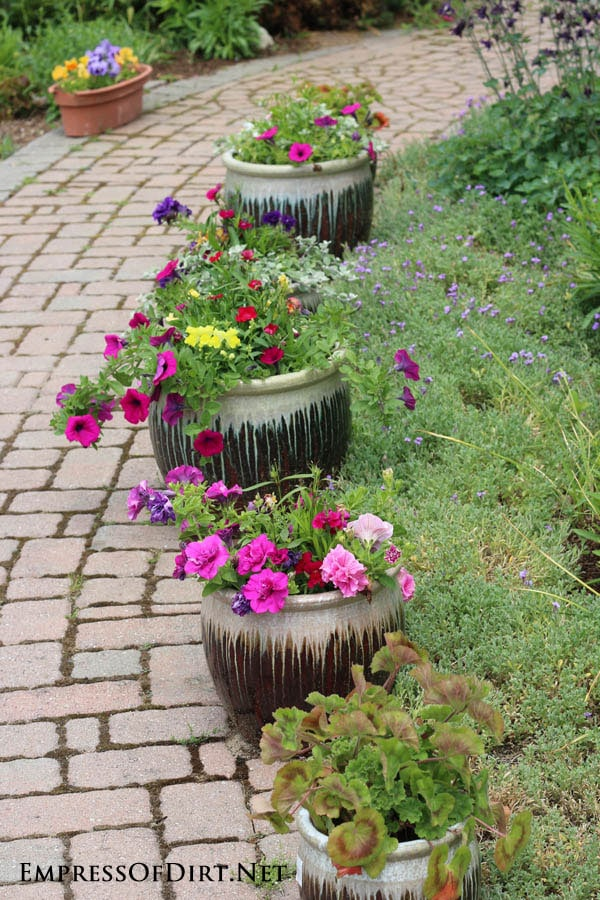 Ceramic planters along the path with colourful flowers | 21 Gorgeous Flower Planter Ideas
