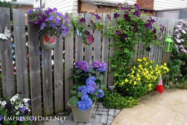 Lots of purple flowers! | 21 Gorgeous Flower Planter Ideas