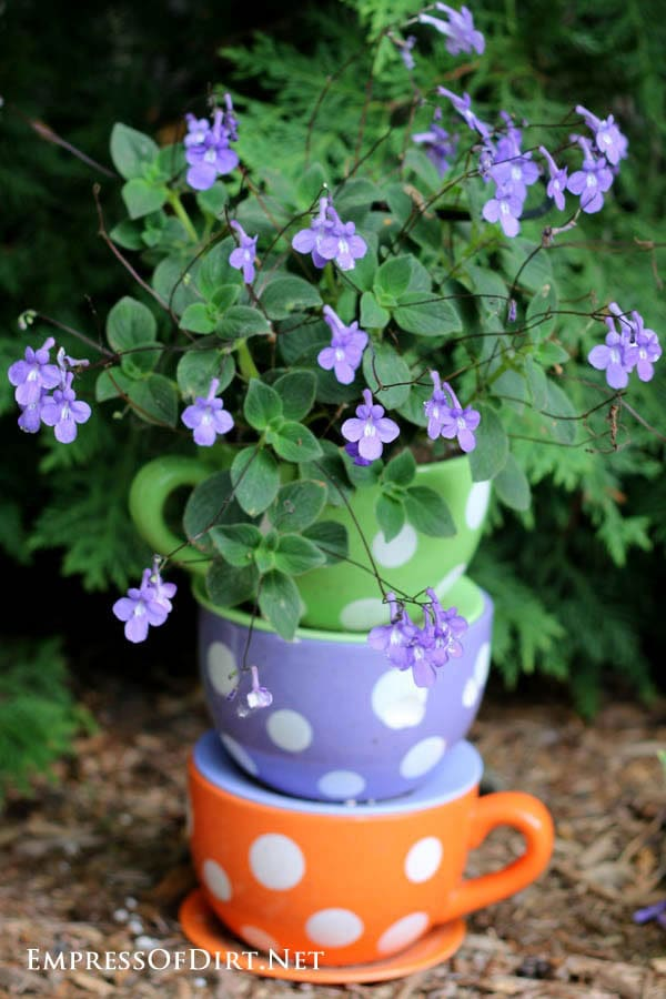 Sweet polka-dot teacups stacked up with purple flowers | 21 Gorgeous Flower Planter Ideas