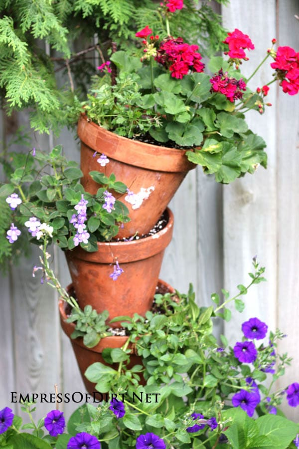 Tipsy Pots Gallery - also known as topsy turvy towers - clay pots with petunias and geraniums