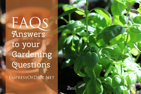FAQ Answers to your gardening questions about growing basil indoors, attracting butterflies, choosing container mix, understanding types of seeds, growing your first veggie garden, and making sure garden art doesn't come unglued.