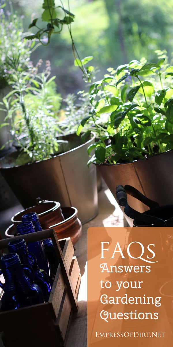 FAQs: Answers to your gardening questions - topics include basil, container gardening, attracting butterflies, understanding types of seeds, and getting started in gardening