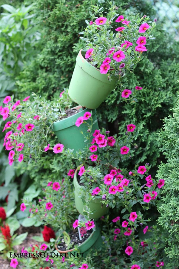 Tipsy Pots Gallery - also known as topsy turvy towers - green pots with pink flowers