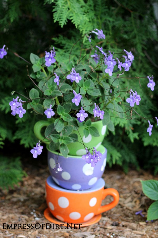 Tipsy Pots Gallery - also known as topsy turvy towers - polka dot teacups with purple flowers