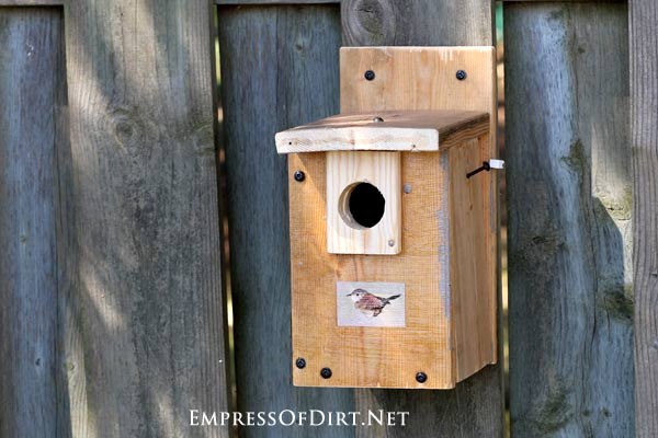 DIY Birdhouses: make a wren nesting box and find out what birds need for a safe and happy home for raising their young.