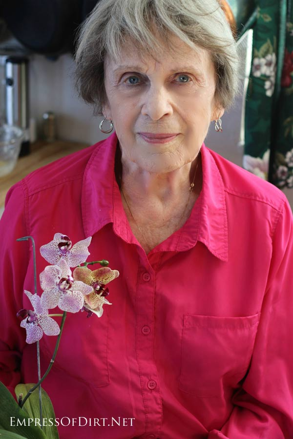 Orchids for beginners: this experienced grower says she's no expert but her orchids do beautifully!