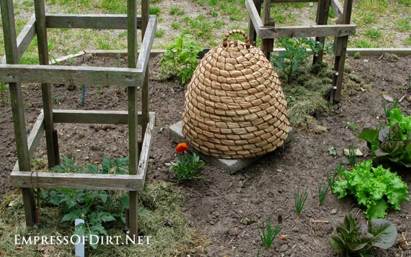 Wooden plant supports for tomatoes and decorative bee skep in a modern Victorian kitchen garden.