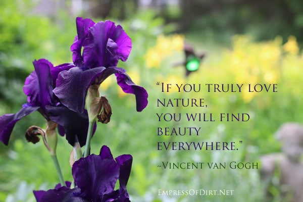 If you truly love nature, you will find beauty everywhere. ~Vincent Van Gogh. See more favourite quotes at http://empressofdirt.net