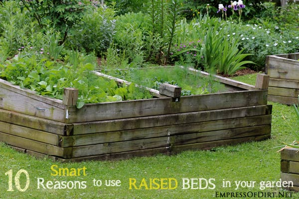10 smart reasons to use raised beds in your garden empress of dirt for Best wood for raised garden beds