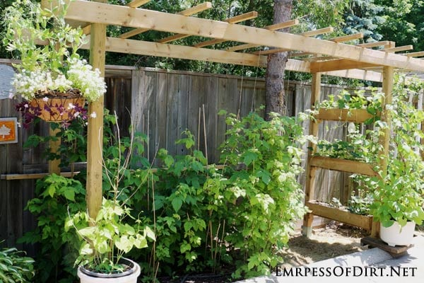 Make A Garden Arbor Planter Perfect For Strawberries Empress Of Dirt
