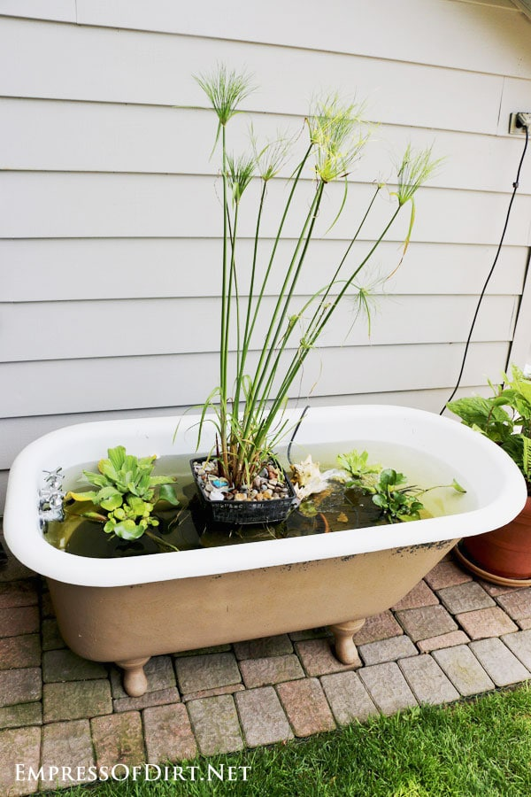 Turn An Old Claw Foot Bathtub Into A Fabulour Little Container Garden Pond  With This Free
