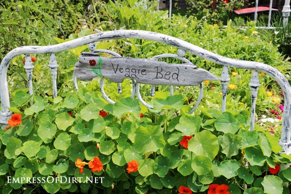 Metal bed frame in flower garden with sign reading 'veggie bed'.