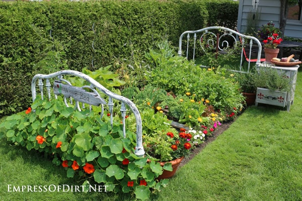 Turn An Old Metal Bed Frame Into A Spectacular Veggie Garden It S Easy To Do