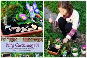 Fairy Garden 101: Create your first fairy garden!