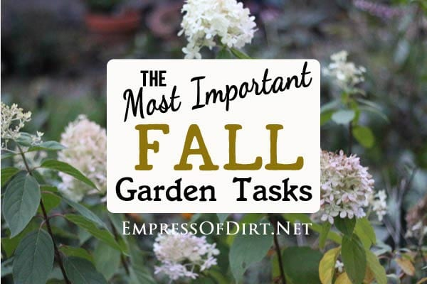 There are so many chores to take care of in the fall garden. But what really matters? Which ones can wait? Come see a way to determine your priorities so the most important items get done before the cold weather sets in.
