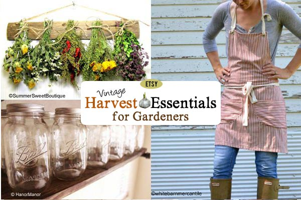 Vintage Harvest Essentials for Gardeners on Etsy