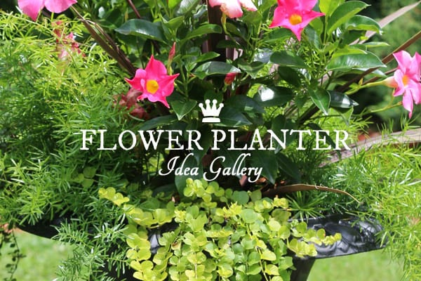 21 Gorgeous Flower Planter Ideas To Inspire Your Garden. Urns, Baskets,  Raised Beds