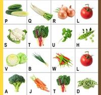 Vegetable planting plan.