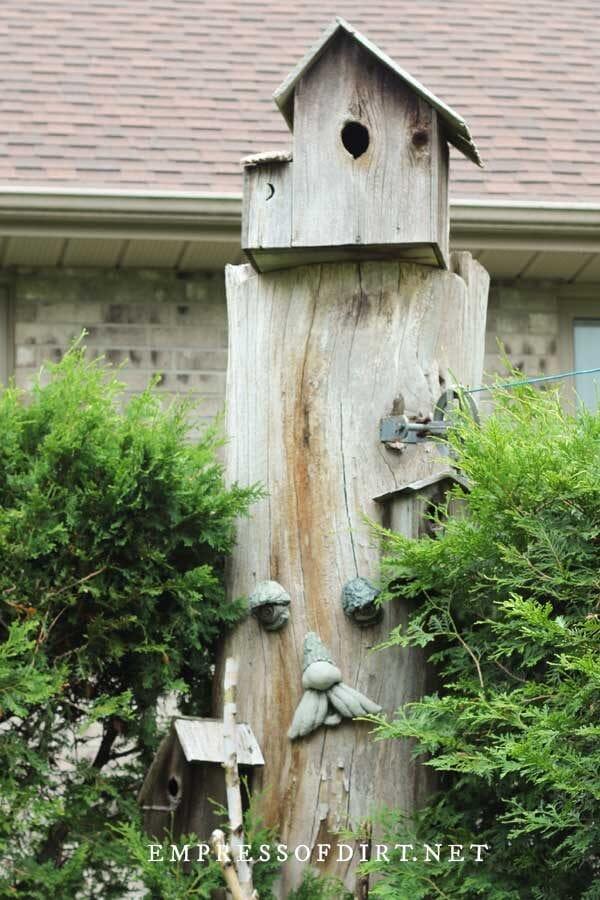 Rustic wood birdhouse on tree stump.
