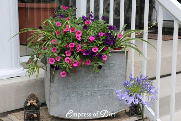 Old Metal Box Planter