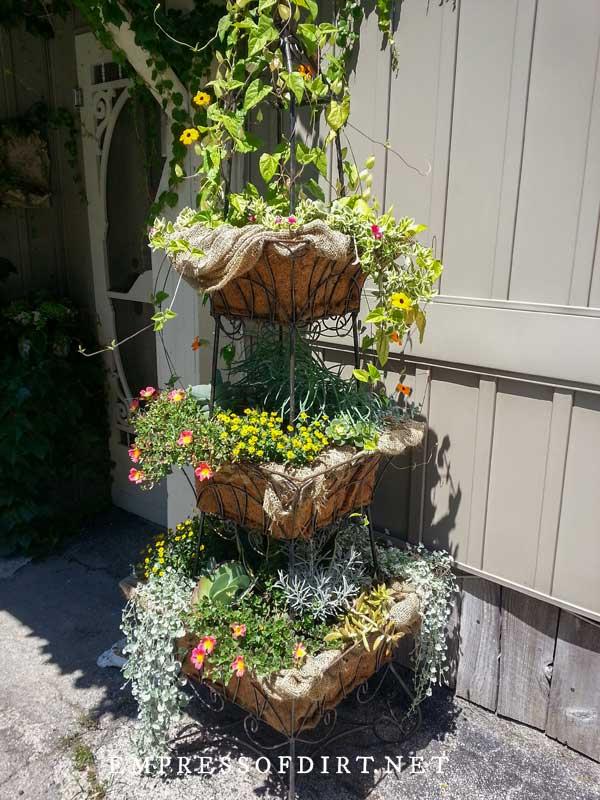 Cake Tier Planter