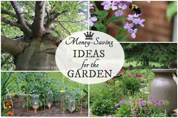 Money-saving ideas for the garden to make the most of what you have and grow organically