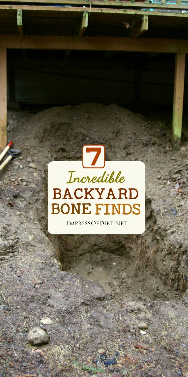 How cool would it be to find dinosaur, prehistoric wolf, or mammoth bones while digging in the garden? This collection of stories shows some incredible discoveries of bones in backyards.
