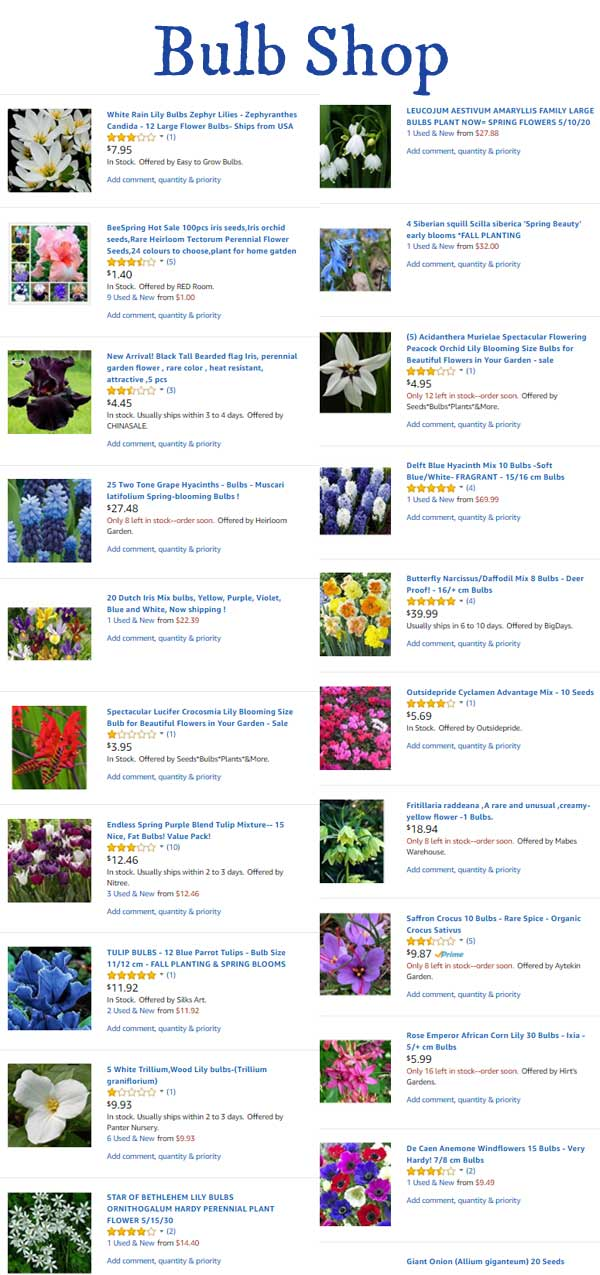 Flower Bulbs | Amazon.com