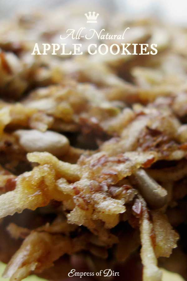 If you love apples and cookies but don't want to eat flour or refined sugar, this gluten-free recipe is for you.