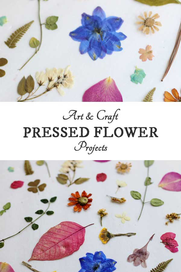 Make your own pressed flowers for these 25 gorgeous botanical crafts and DIY projects.
