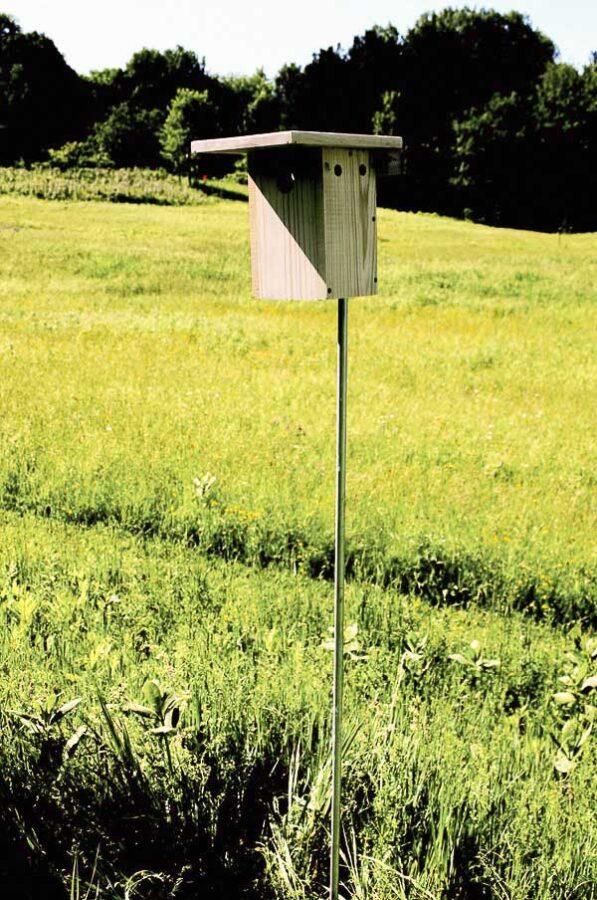 Bluebird nesting box in field.